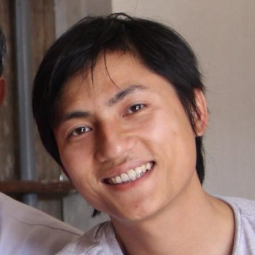 Hong Diep NGUYEN linkedin profile