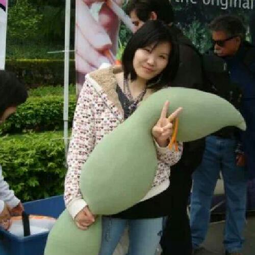Ling Xiao linkedin profile