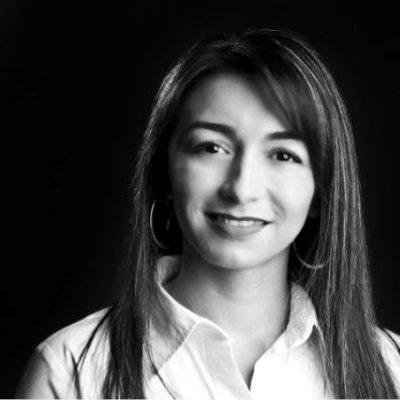 Sandra P Castro linkedin profile