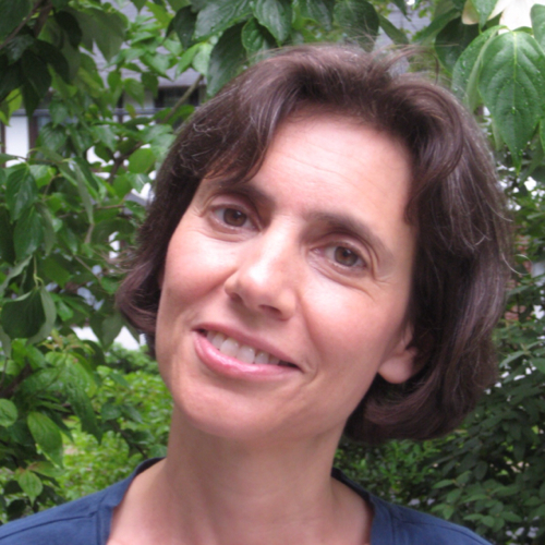 Anne Berman linkedin profile
