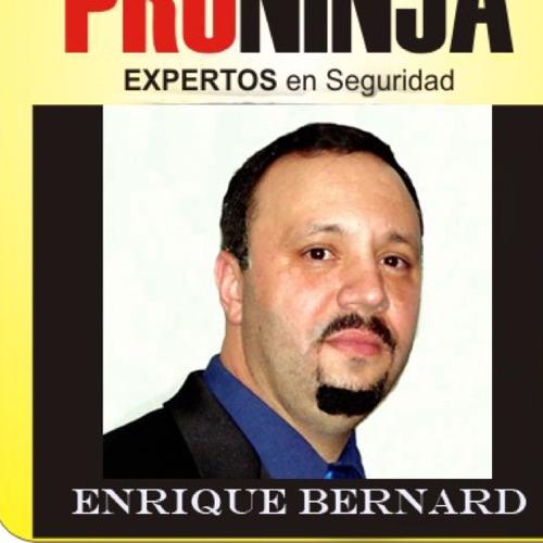 E Bernard linkedin profile