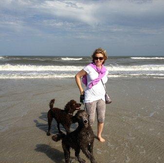 Carol J MURPHY linkedin profile