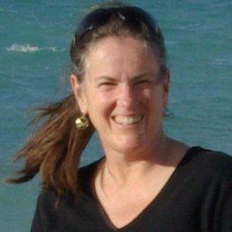 Ann L Davison linkedin profile