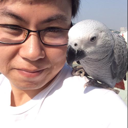 Liang (Toni) Chen linkedin profile
