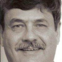 Ronald Berger linkedin profile