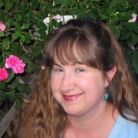 Julie Bawden Davis linkedin profile