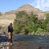 David Earl King linkedin profile