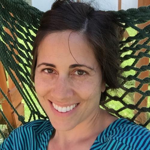 Diane (DiLeo) Noel linkedin profile