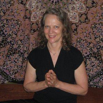 Lisa Nelson Raabe linkedin profile