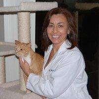 Patricia V. Pike linkedin profile