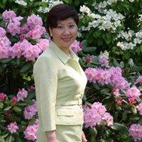 Lan Chen linkedin profile