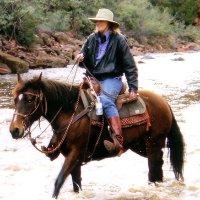 Joanne L. Anderson linkedin profile