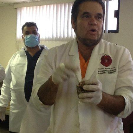 Alfredo Rodriguez linkedin profile
