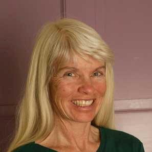 Diane Mitsch Bush linkedin profile
