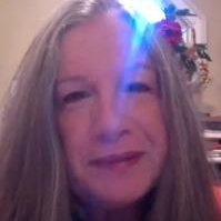 Susan M Davis linkedin profile
