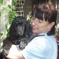 Marcia Shannon linkedin profile