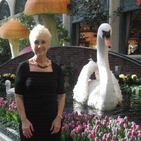 Pamela Lee Sunderland linkedin profile