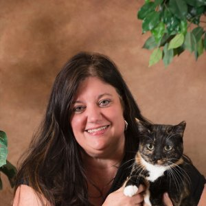 Leigh Ann Johnson linkedin profile