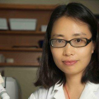 Min (Clare) Wang linkedin profile