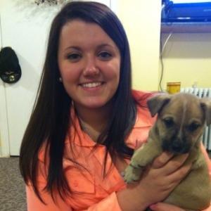 Julia Lauren Mason linkedin profile