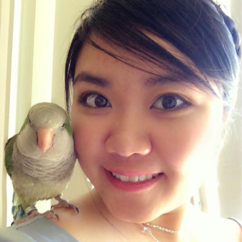 Kendy Quyen Luu linkedin profile