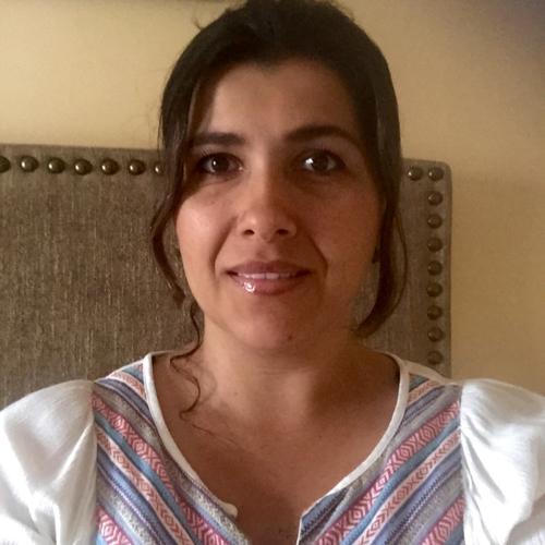 Claudia Andrea Rodriguez Vergel linkedin profile