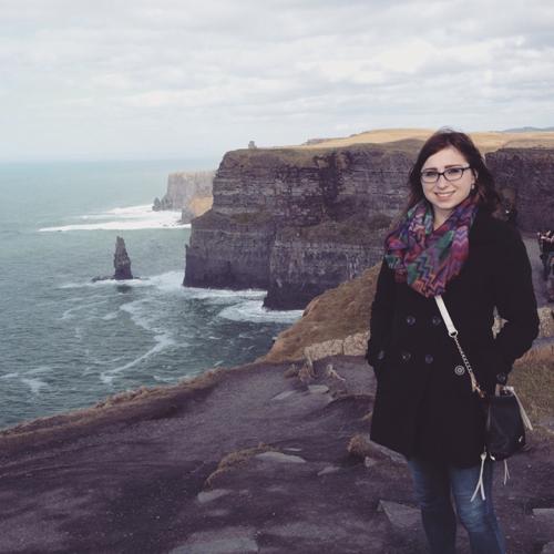 Sarah McNeil linkedin profile