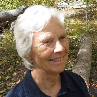 Dorothy Hahn linkedin profile