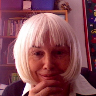 Mary Joan Koch linkedin profile