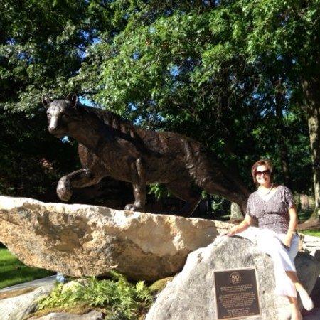 Stephanie Huber linkedin profile