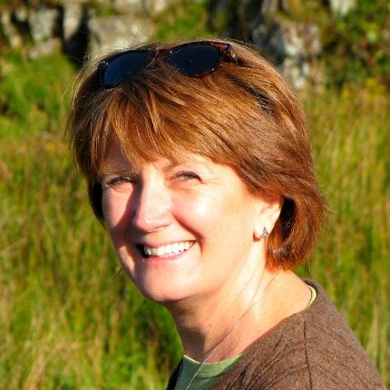 Sally Howell Johnson linkedin profile