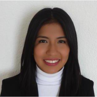 Laura Rosa Ramirez Hernandez linkedin profile