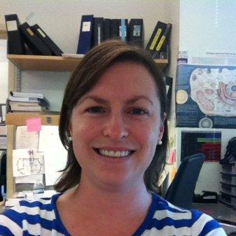 Julie Clarke Williams linkedin profile