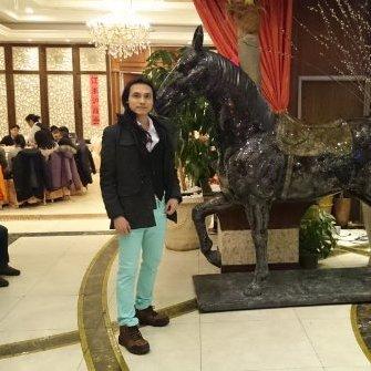 Hoa Lam Chau linkedin profile