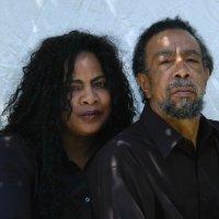 Tommy and Joyce Collins linkedin profile
