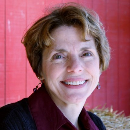 Donna Sullivan linkedin profile