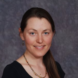 Michelle Wilson Folan linkedin profile