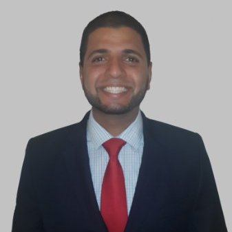 Raul David Arias Flores linkedin profile